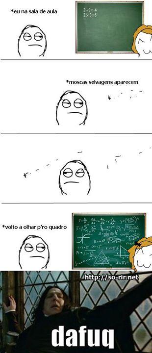 mosca na aula de matematica