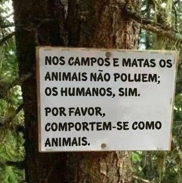 animais humanos matas